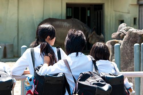 東山動物園2-1