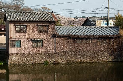 亀山宿-12