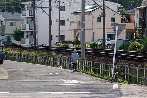 小幡緑地東園-8