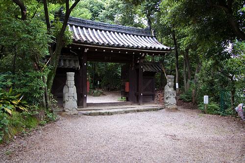 覚王山21日-5