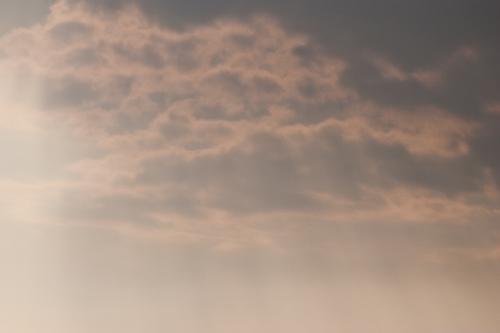 空コレ2010-11