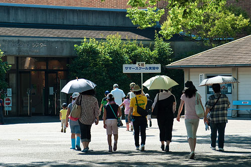 東山動物園夏2-10