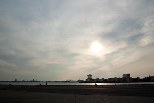 名古屋港夕景
