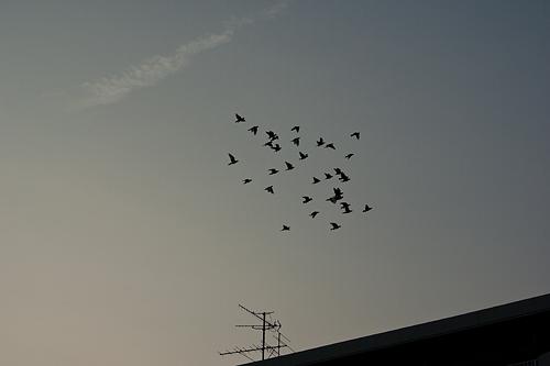 瀬戸電風景-15