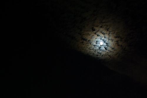 小牧お月見-12