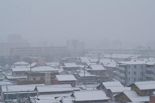 雪降り-2