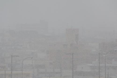 雪降り-5