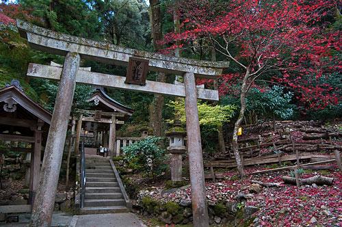 伊奈波神社-10
