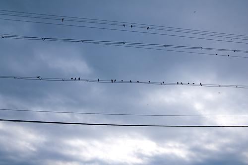 飛鳥1-10