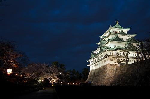 名古屋城桜-10