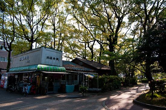 中村公園-10