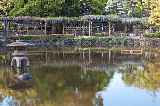 中村公園-7