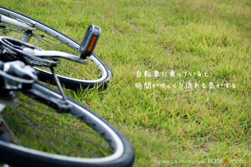 IMG_5852.jpg