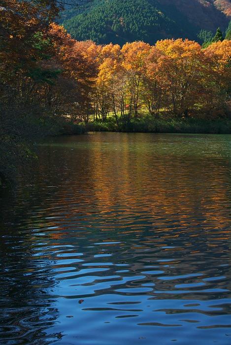晩秋の田貫湖