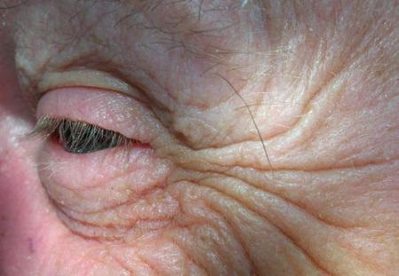 2009-12-17-123040_convert_20091222102946.jpg