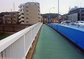 新羽橋201004301