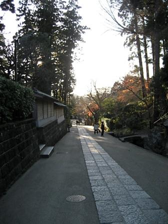 円覚寺_3311
