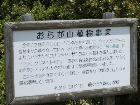 2010_05030211.jpg
