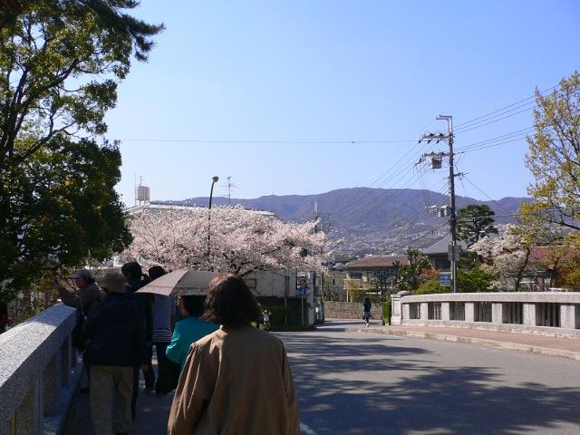syukugawa10040803.jpg