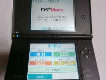DSiショップ、3つ目の画面